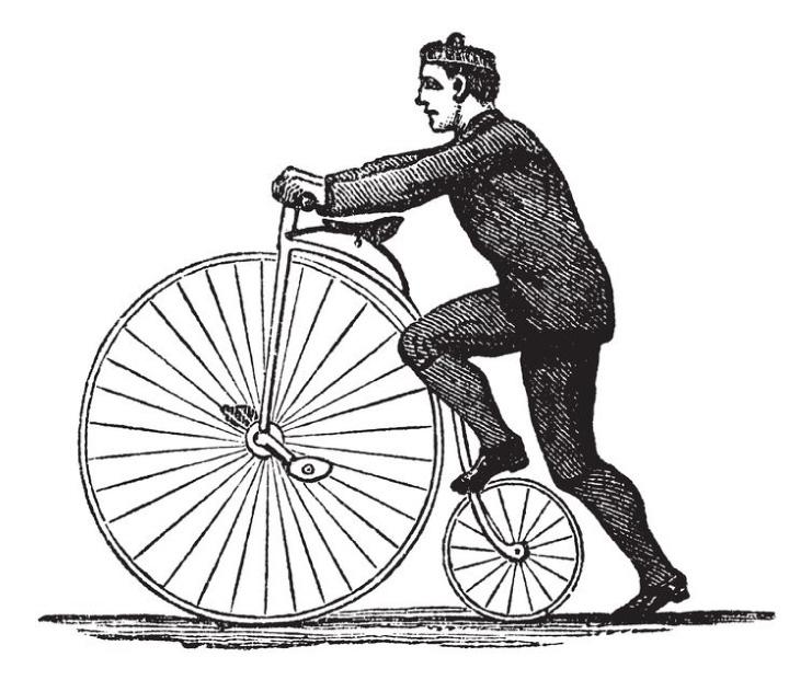 illustrazione-escursione-bici