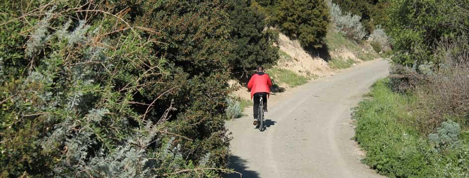 escursione-in-bici-per-le-vie-e-la-campagna-del-paese